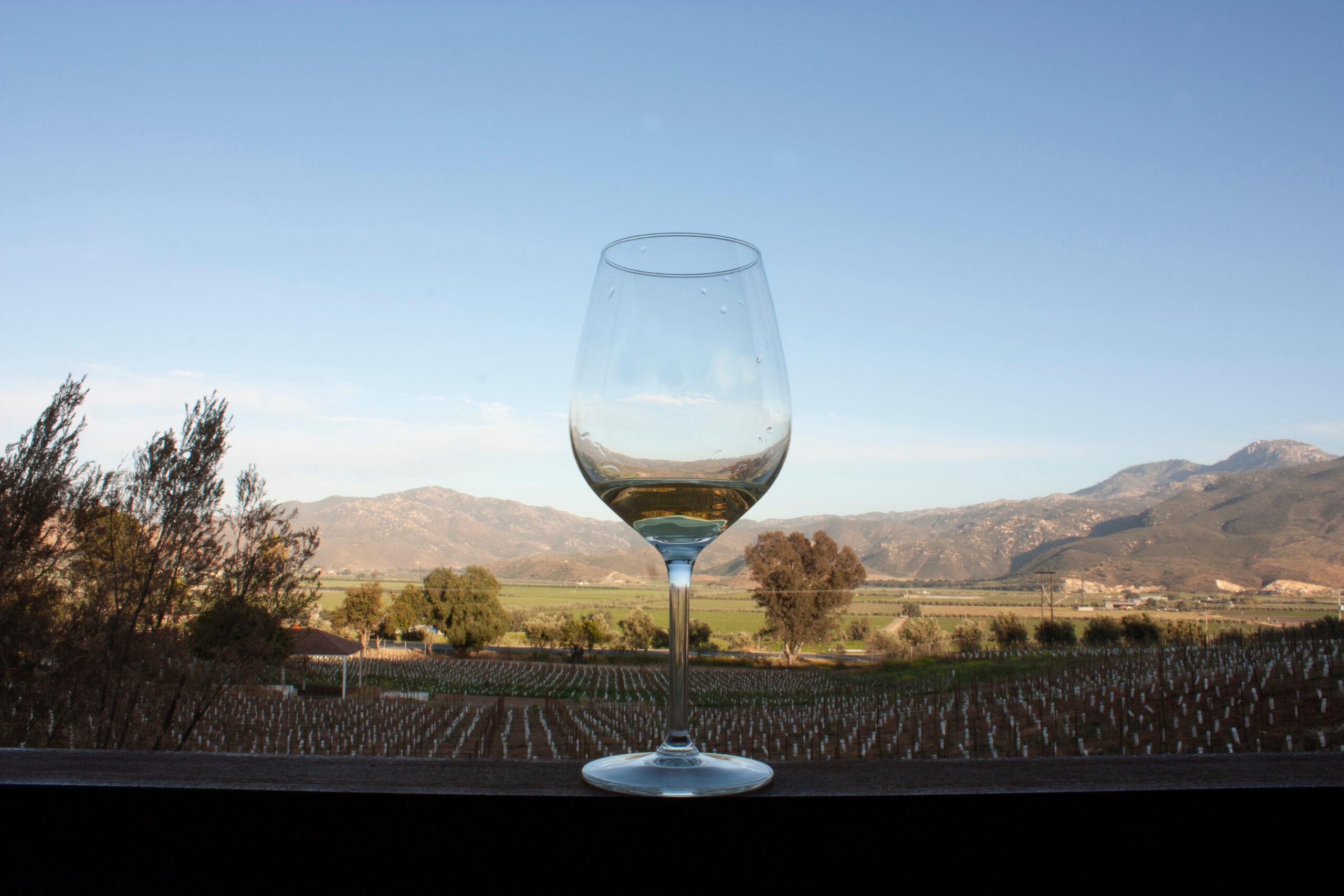 Baja-california-ruta-vino